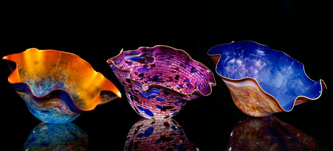 Dania Beach Wiener Museum of Decorative Arts chihuly