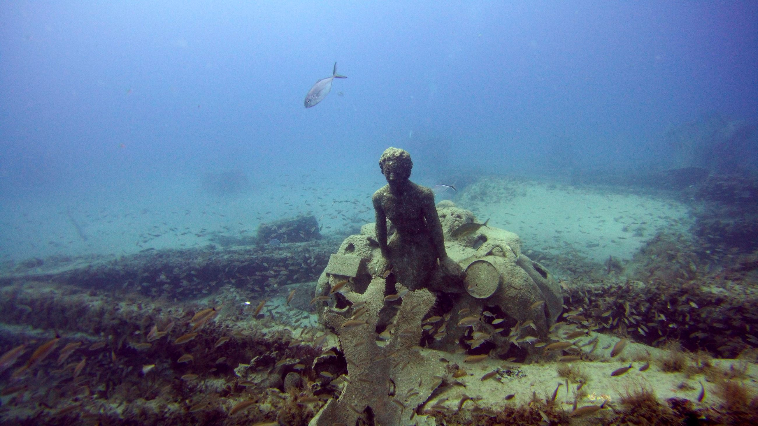 1000 Mermaids Artificial Reef Project Dania Beach Florida