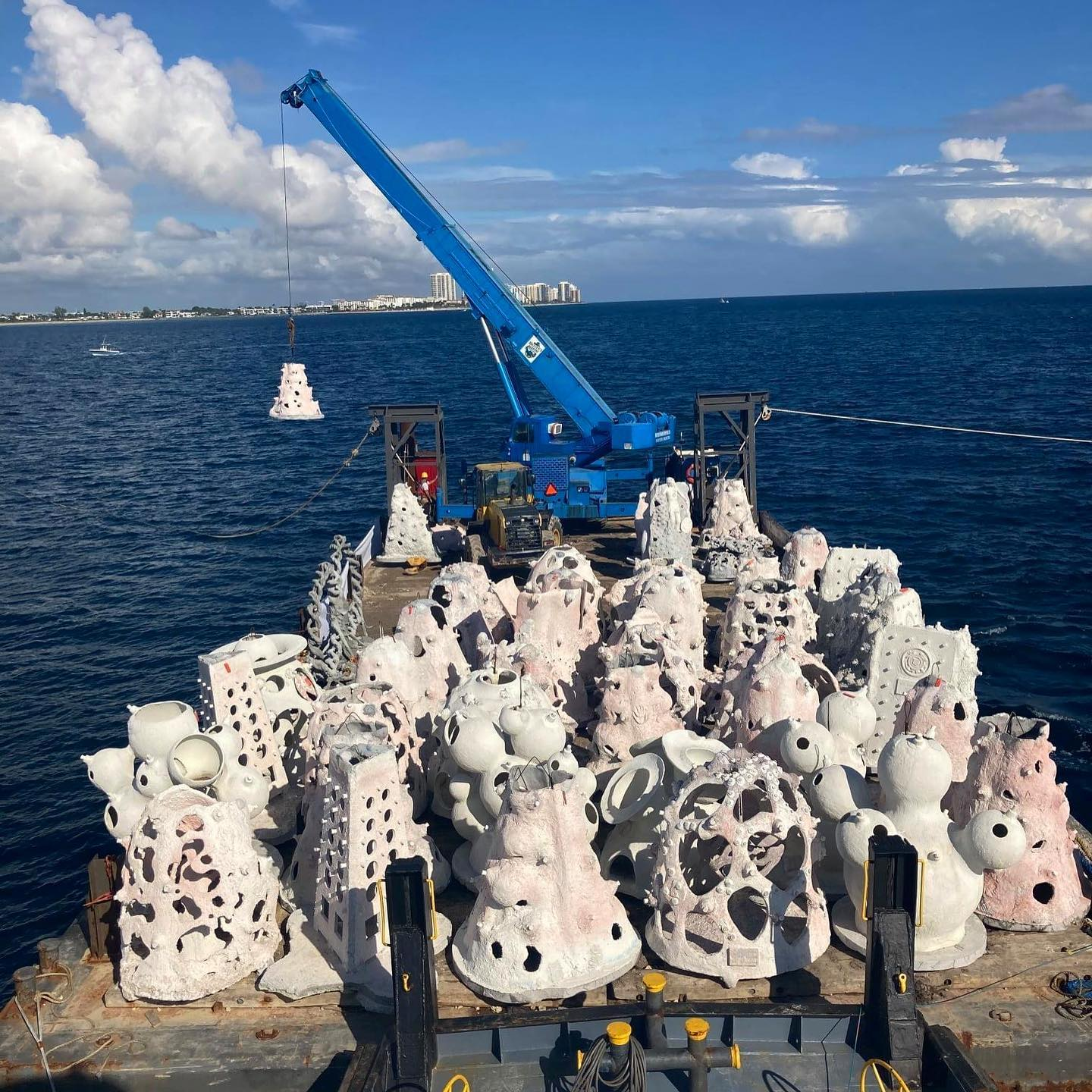 Dania Beach 1000 Mermaids Artificial Reef Project