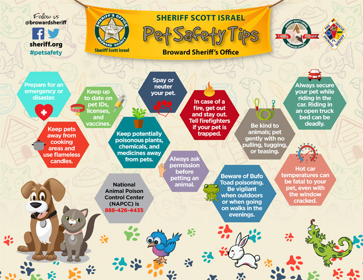 BSO Pet Safety Tips