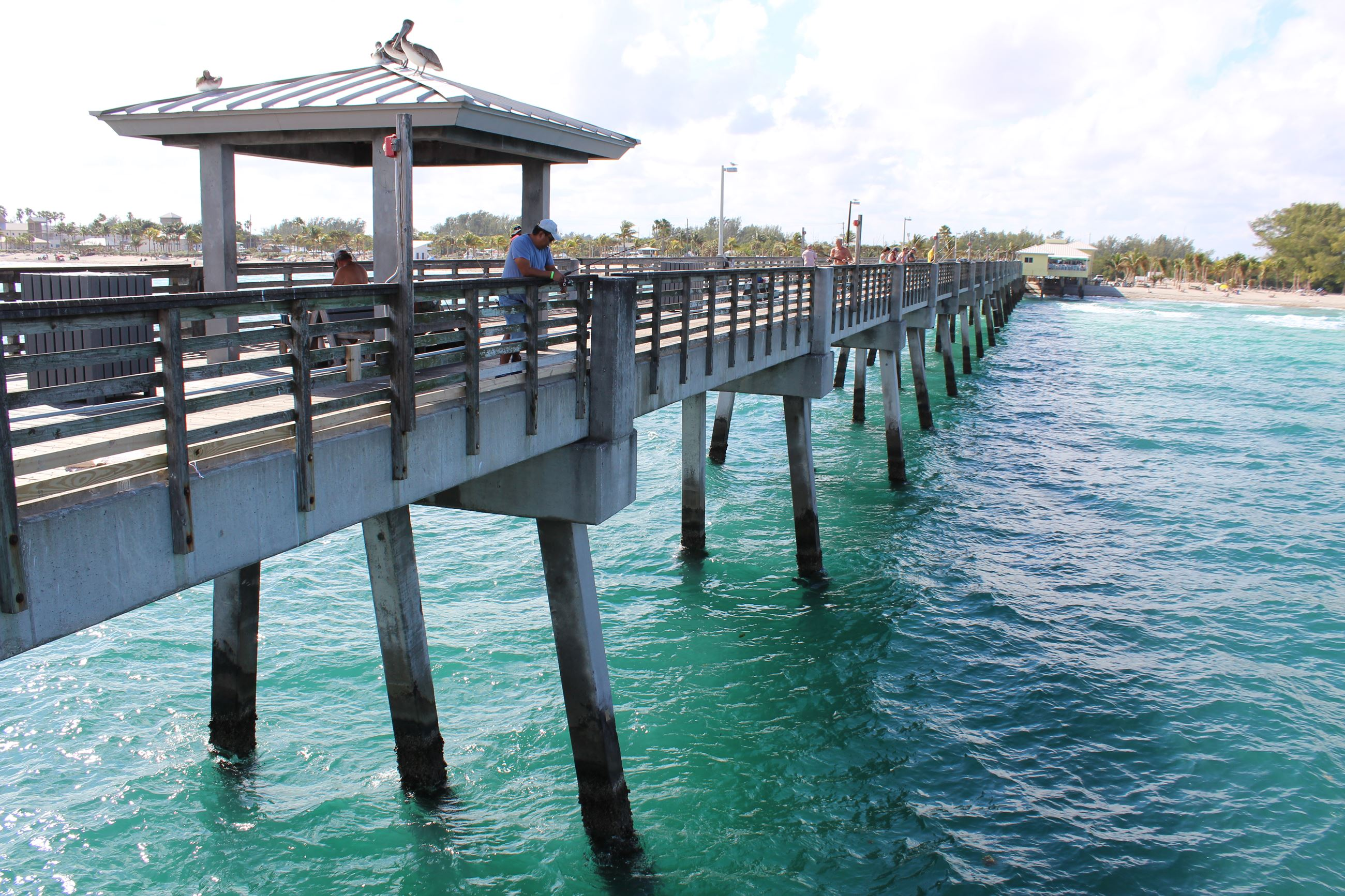 Ocean Park Beach, Fishing Pier, Marina Dania Beach