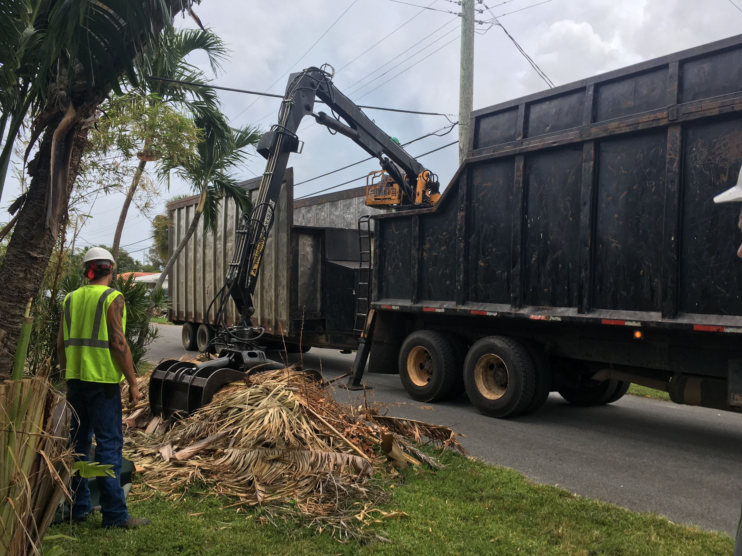 Debris Pickup Post Hurricane Irma Dania Beach