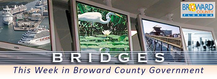 Bridges - Broward County Government Newsletter