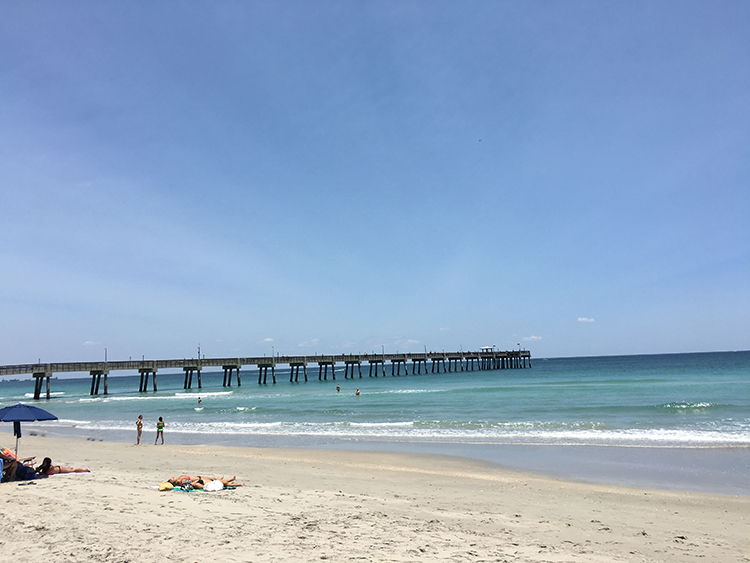Ocean Park Beach Fishing Pier Marina City Of Dania Florida Official Web Site